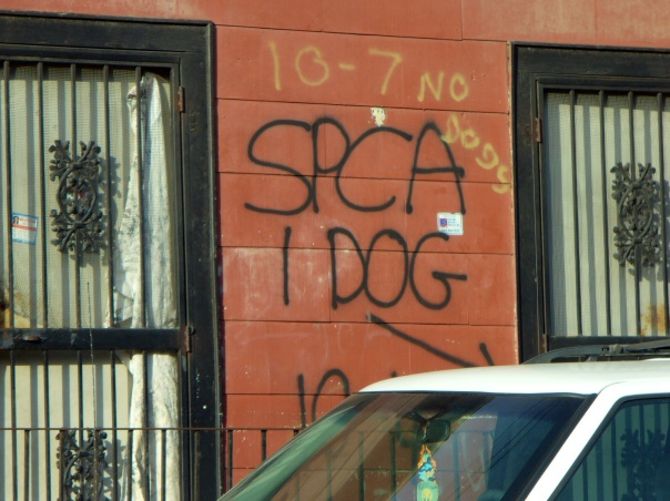 Tcoupitoulas St, New Orleans, 2008